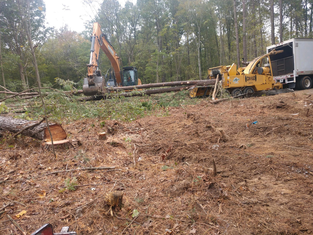 Cape Fear Clearing Project - Stewarts Grading and Hauling